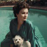 Jean Simmons Never Won an Oscar: The Actresses